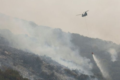 Growing California Wildfire Spares Group of Giant Sequoias