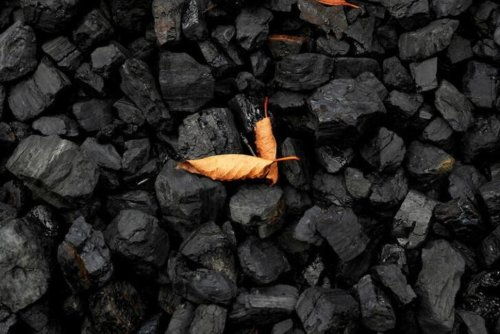 New Maine Law Marks U.S. First on Fossil Fuel Divestment | U.S. News® | US News