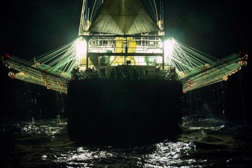 Small Fry: Peru's Fishermen Battle China's Overseas Fleet