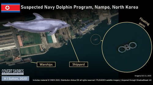 New Evidence Suggests North Korea has a Naval Marine Mammal Program
