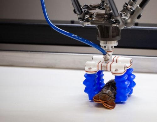 Robotics cover image