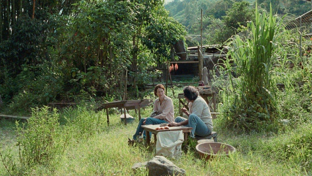 Festival de Cannes 2021 : Memoria d'Apichatpong Weerasethakul, l'ivre de la jungle