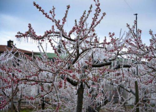 Clima, aprile molto più pazzo di marzo: le foto - VanityFair.it