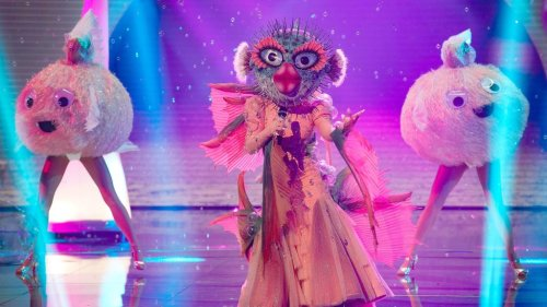 'The Masked Singer' Reveals Identities of the Pufferfish and Mother Nature: Here Are the Stars Under the Masks