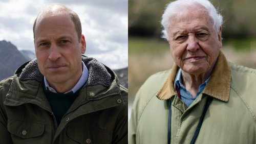 Prince William Teams With David Attenborough For New Discovery Plus Series 'The Earthshot Prize: Repairing Our Planet'