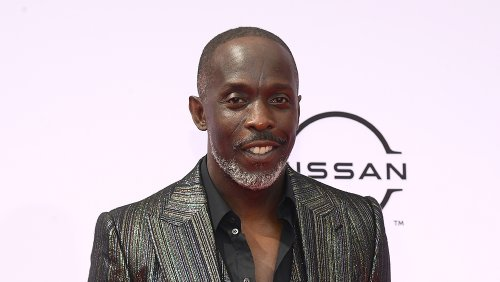 Michael K. Williams' Cause of Death Revealed as Fatal Overdose of Mixture of Drugs