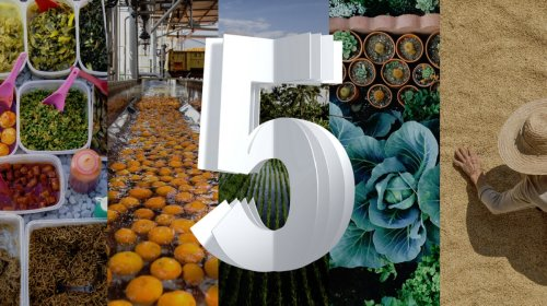 Food Recovery & Sustainability cover image
