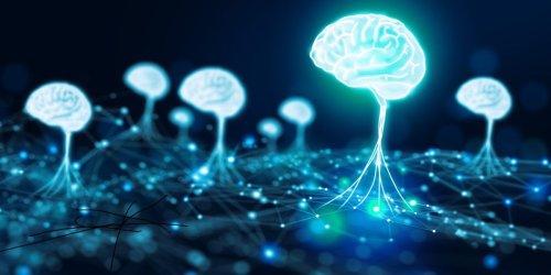 Can you teach AI common sense?