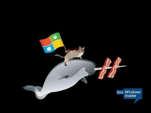 Microsoft releases Ninjacat desktop background images ahead of Windows 10 launch