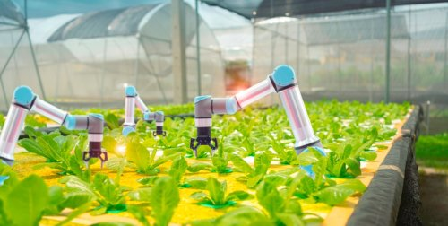 Linux Foundation launches open source agriculture infrastructure project