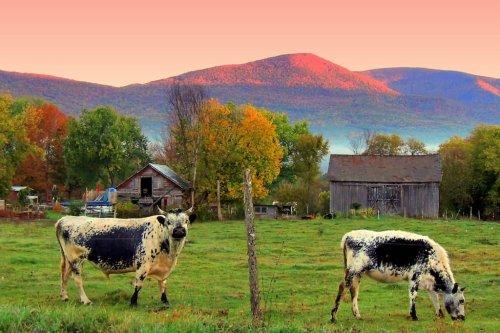 Southern Vermont Getaway: Take a Mini Leaf-Peeping Road Trip