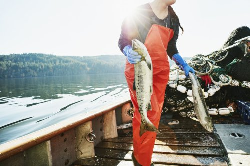Increasing Omega-3s Could Add Five Years to Your Life