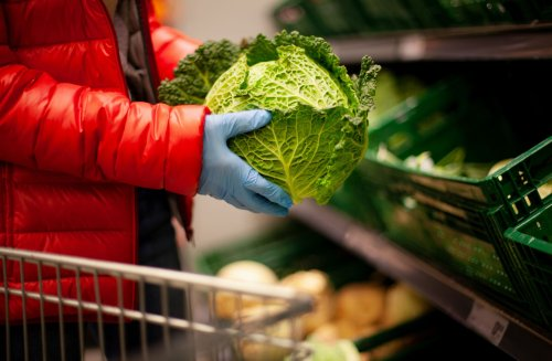 It is Time to Make Nutrition Security a Priority For All Americans