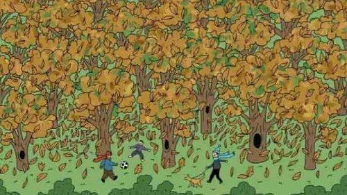 Il test dello scoiattolo: in pochi riescono a trovarlo in meno di 3 minuti. E tu?
