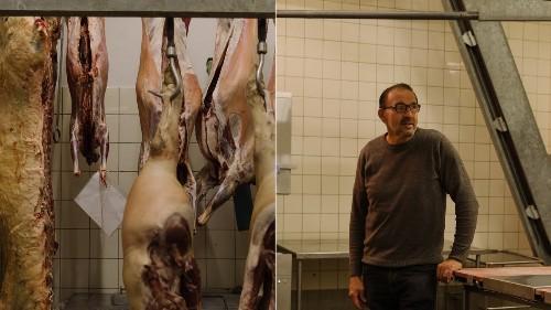 Hoe het is om voor je werk dieren te doden