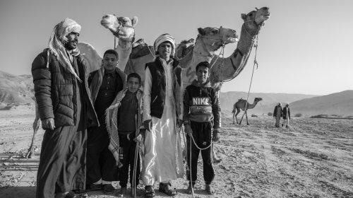 Fotos Kamelrennen in der Sinai-Wüste