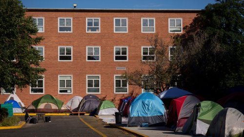 Howard Students Are Sleeping in Tents Because Their Dorms Are Moldy