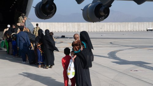 Montana Congressman Says The Entire State Can't Make Room for 75 Afghan Refugees