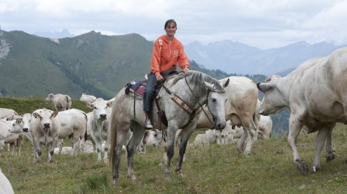 La vie d'une jeune éleveuse de bétail dans les Alpes italiennes