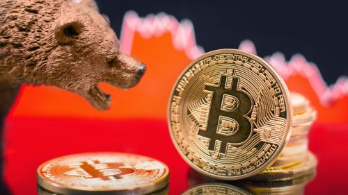 We Asked Some Crypto Experts: WTF Do We Do Now?