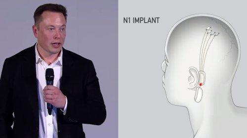 Elon Musk ha annunciato un piano per 'fondere' il cervello umano con l'intelligenza artificiale