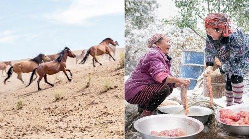 Fotos que muestran por qué algunas personas disfrutan la carne de caballo y otras no