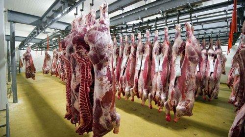 """""""Consommer de la viande finira par être interdit"""""""