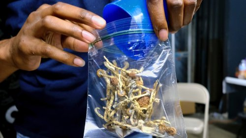 Sex Work and Magic Mushrooms Won't Be Prosecuted Anymore in This Michigan County