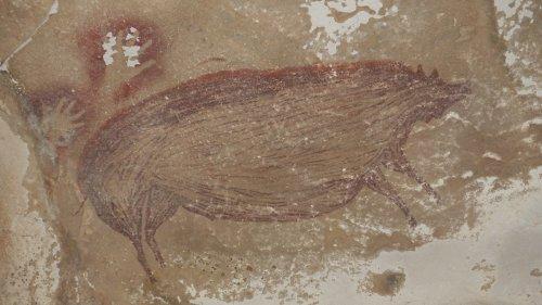 Descubren el arte rupestre más antiguo del mundo en Indonesia: un cerdo