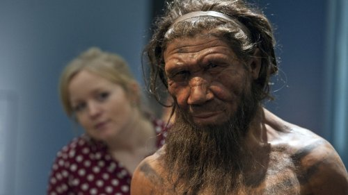 Scientists Spent Years Pretending to Be Neanderthals Catching Birds by Hand