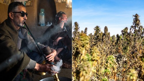 I Went On a Weed Tour of Afghanistan