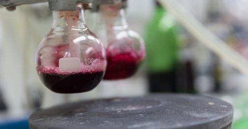 Wine 101: Oenology
