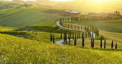Wine 101: Sangiovese/Chianti