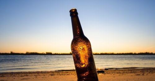 We Asked 11 Brewers: What's the Best New Summer Beer? (2021)