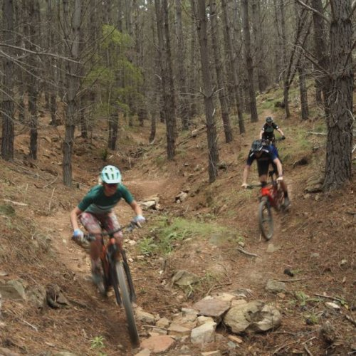 Dieter Kahsnitz's field notes while cycling Canberra