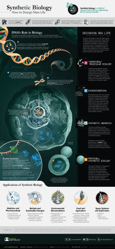 Explainer: How Synthetic Biology is Redesigning Life