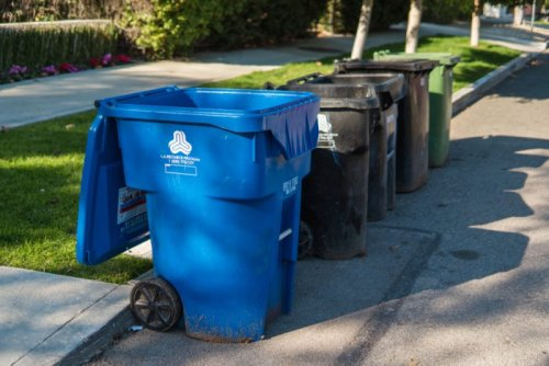 One Councilman Wants to Trash the People's Ordinance