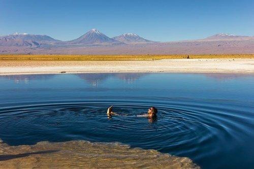 Laguna Cejar: Boiando em águas hiper salgada no Atacama!