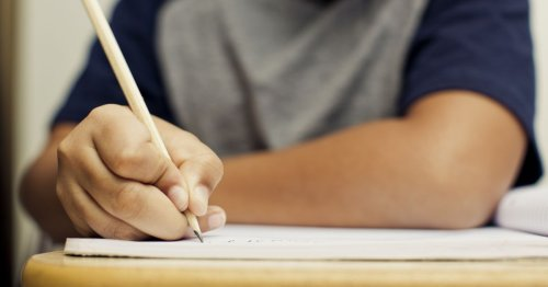 Tennessee's school-by-school TCAP scores are out. See how yours did.