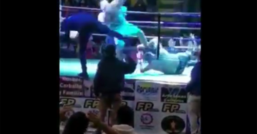 Pride rules? Watch boxer get DQ'd for repeatedly stomping on opponent