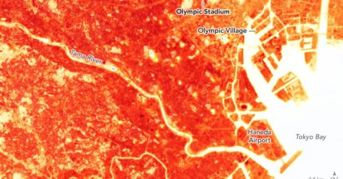 Olympic athletes are competing on an urban heat island
