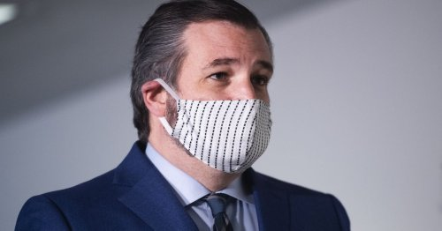 Ted Cruz Opines That Waiters Would Rather Collect Unemployment Than Work Amid Deadly Pandemic