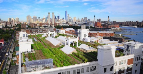 Farming The Future cover image