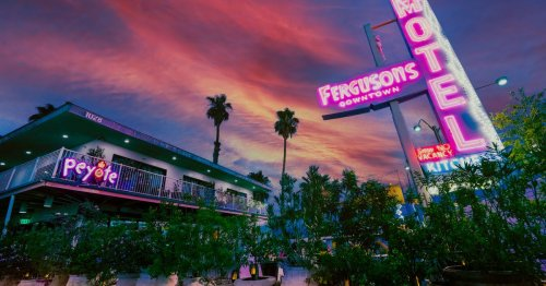 A Desert Respite Filled With Cactus, a Canopy of Lights, and Brunch and Dinner Debuts Downtown This Summer