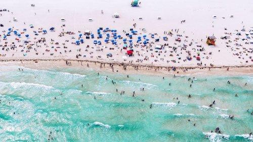 Life in Miami  cover image