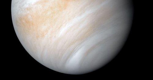 A living rain: How one planetary scientist imagines life on Venus
