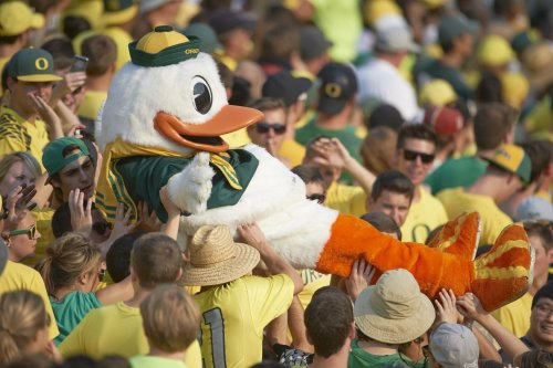 Arizona vs. Oregon: Game time, TV channel, odds, radio, how to watch online