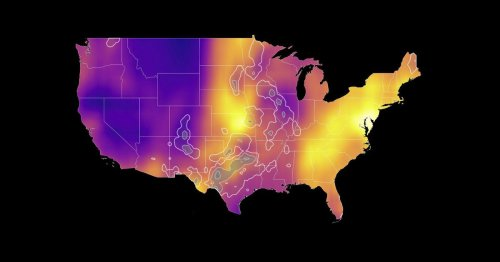 See where birds are migrating in real time, in one map