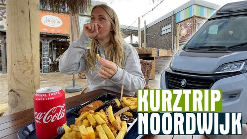 3 Tage Noordwijk - Noordwijkerhout - Camping Sollasi [mit Hund] • Waldhelden