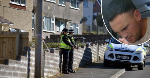 Former Ospreys youth player convicted of murdering pensioner